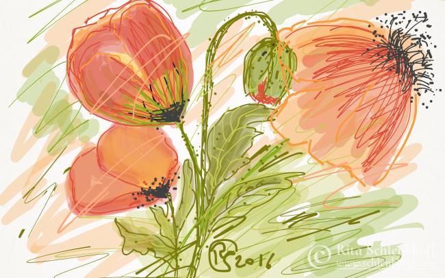 Fingerpainting Postkarte C 6, Klatschmohnblüten